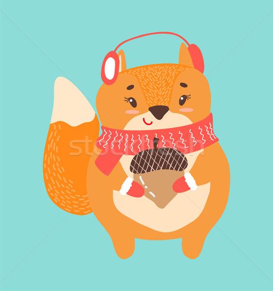 Gelukkig eekhoorn eikel icon geïsoleerd witte Stockfoto © robuart