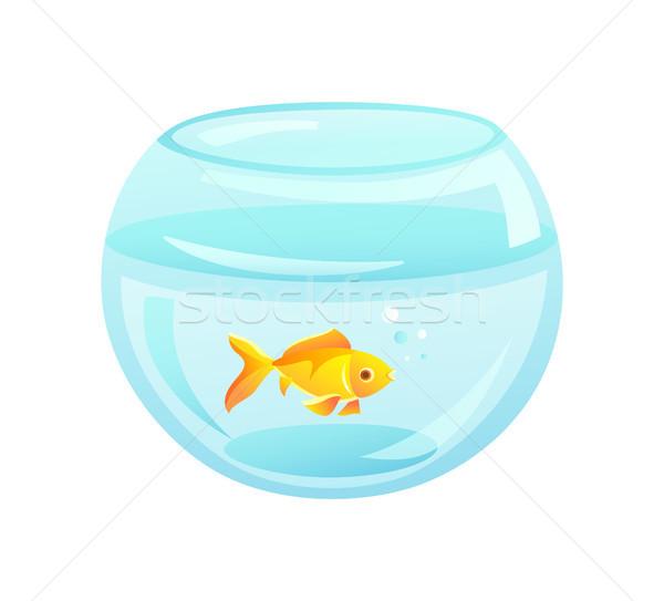 рыбы аквариум форма внутренний ПЭТ Сток-фото © robuart