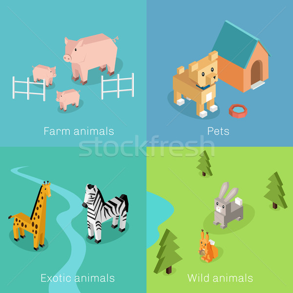 Wild Exotic and Farm Animal Set Isometric Stock photo © robuart