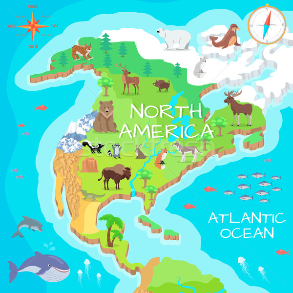 North America Isometric Map with Flora and Fauna. Stock photo © robuart