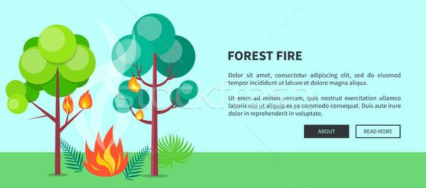 Incendios forestales web anunciante vector incendios forestales Foto stock © robuart