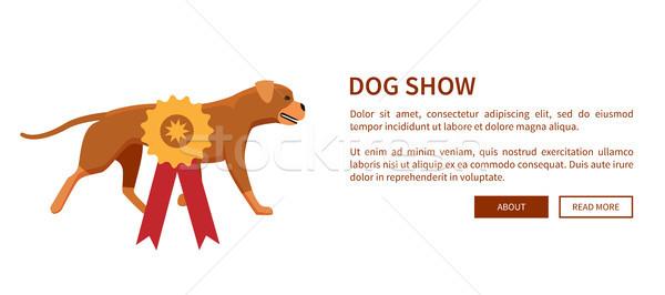 Hond show gunning lint hoektand dier Stockfoto © robuart