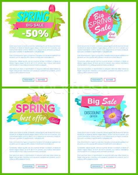Legjobb választás tavasz vásár hirdetés címkék címkék Stock fotó © robuart