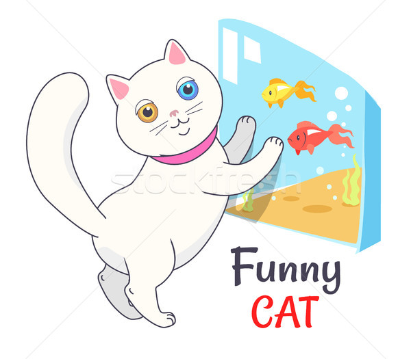 Funny White Cat Looking Aquarium with Fish Vector Stock photo © robuart