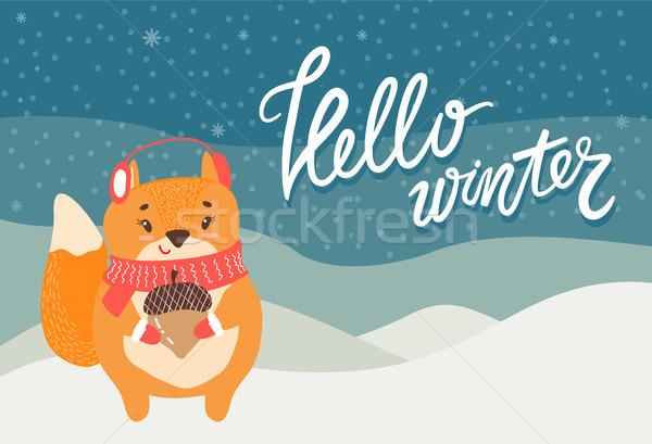 Ciao inverno biglietto d'auguri cute scoiattolo ghianda Foto d'archivio © robuart