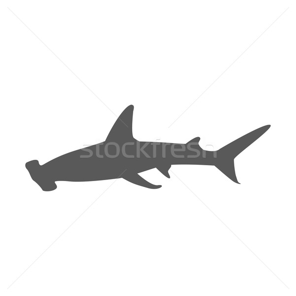 Köpekbalığı ikon yalıtılmış beyaz su deniz Stok fotoğraf © robuart