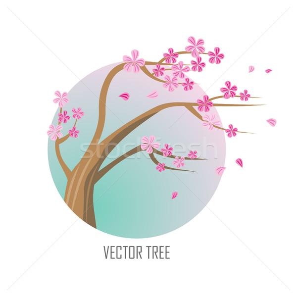 Vector Tree. Sakura Isolated on White. Vector Stock photo © robuart