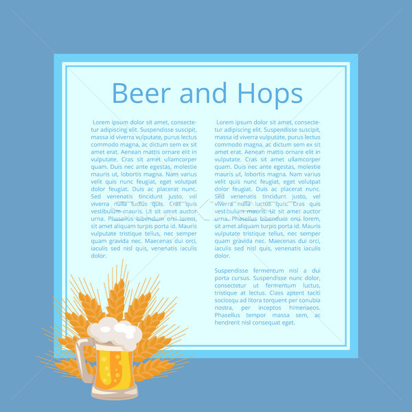 Beer and Hops Poster with Foamy Mug and Wheat Ears Stock photo © robuart