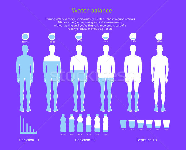 Water Balance in Human Body Vector Illustration Stock photo © robuart