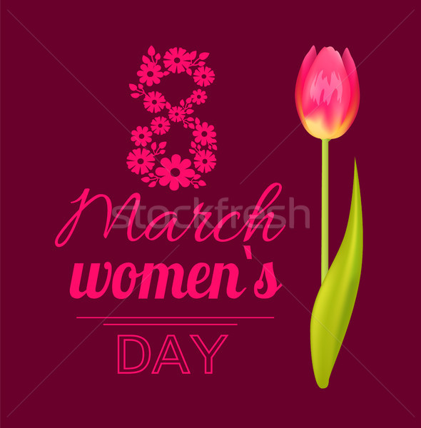 Stock photo: 8 March Womens Day Tulip Vector Illustration