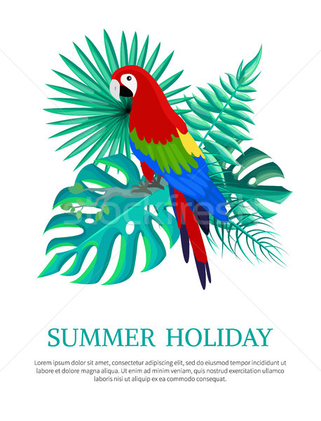Summer Holiday Text Poster Vector Illustration Stock photo © robuart