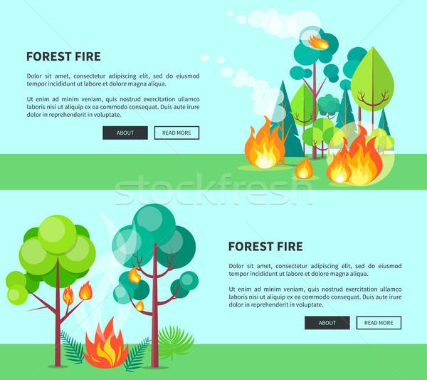 Erdőtűz szett rajz plakátok szöveg futótűz Stock fotó © robuart
