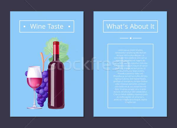 Wine Taste Whats About It Vector Illustration Stock photo © robuart