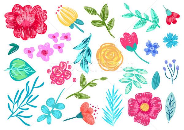 Stok fotoğraf: Kalem · çiçekler · beyaz · model · otlar