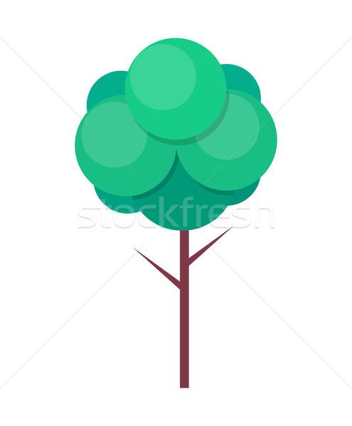Zöld fa vékony zöld levelek vektor körök ikon Stock fotó © robuart