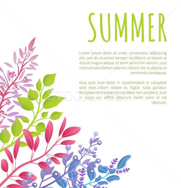 лет плакат шаблон красочный образец Сток-фото © robuart