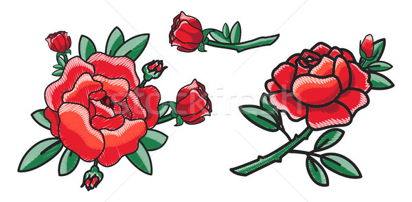 Closeup of Red Rose on Poster Vector Illustration Stock photo © robuart