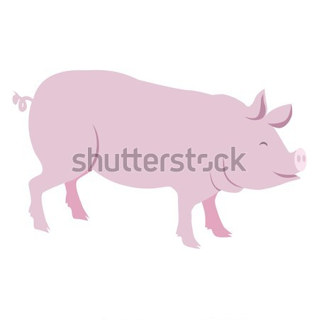 Pink Pig Vector Illustration Isolated on White Stock photo © robuart