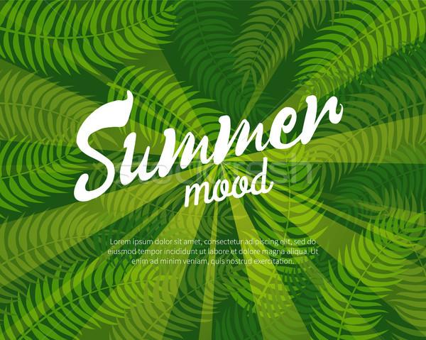 夏 気分 カラフル バナー 孤立した 緑 ストックフォト © robuart