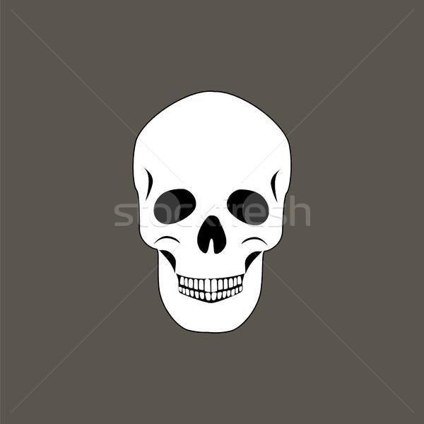 Cranio umani organismo nero denti occhi Foto d'archivio © robuart