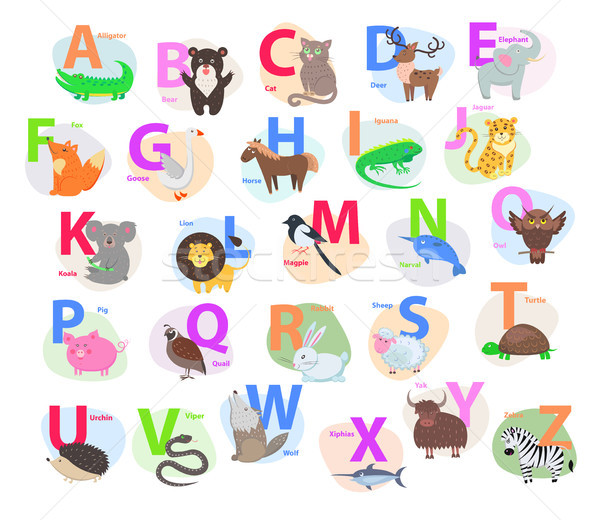 Children ABC with Cute Animals Cartoon Flat Vector Stock photo © robuart