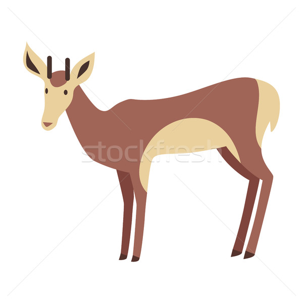 Young Deer Vector Illustration in Flat Design Stock photo © robuart
