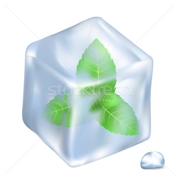 Leaves of Spermint in Ice Isolated Illustration Stock photo © robuart