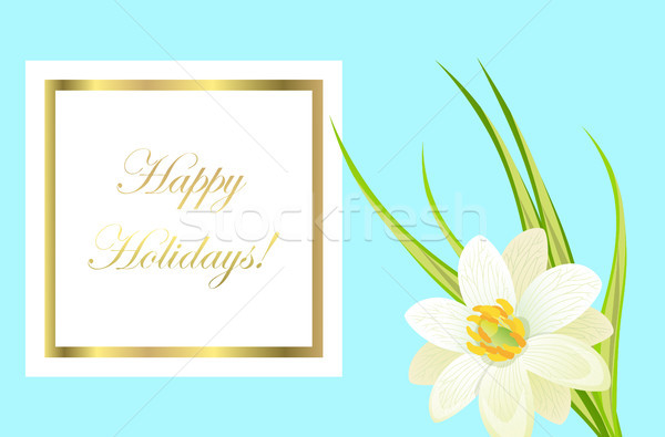 Happy holidays framed card with white narcissus nearby Stock photo © robuart