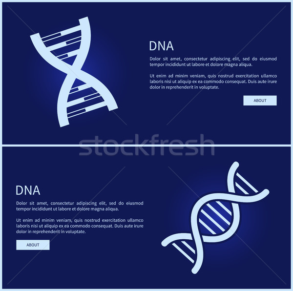 Dna collectie web internet afbeelding Stockfoto © robuart