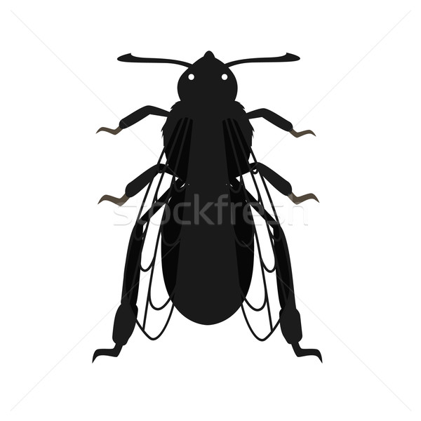 Vector bee icon honingbij koningin cartoon Stockfoto © robuart