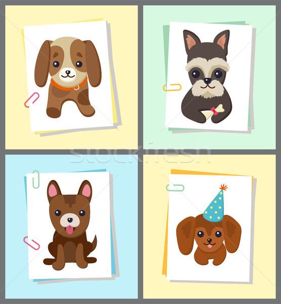 Foto stock: Filhotes · de · cachorro · cães · cartaz · conjunto · coleção · animais · de · estimação