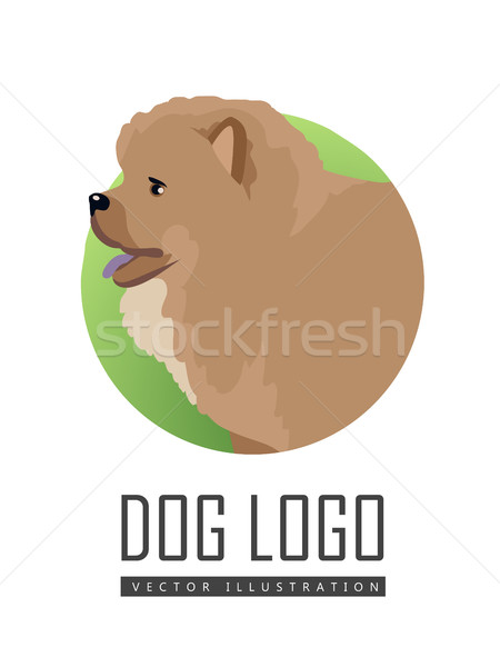 Dog Logo Vector Illustration Chow Breed Isolated Stock photo © robuart