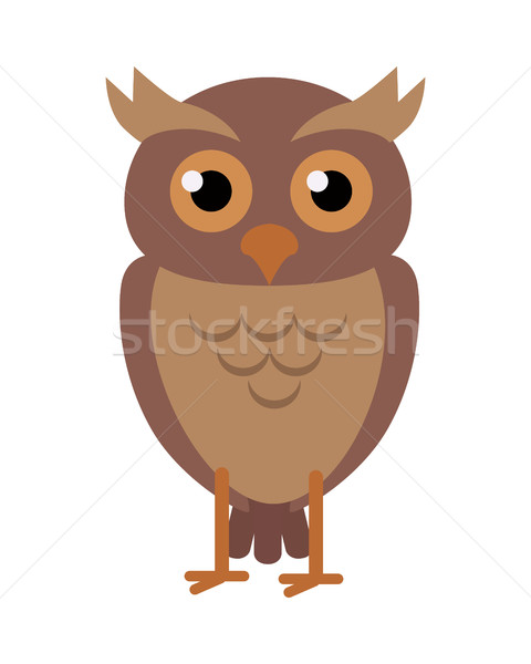 Owl Vector Illustration in Flat Design Stock photo © robuart