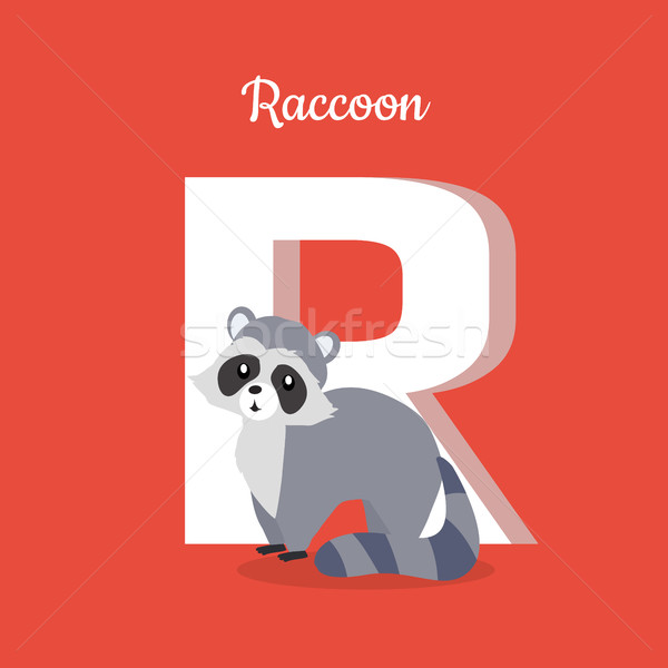 Raccoon with Letter R Isolated. ABC, Alphabet. Stock photo © robuart