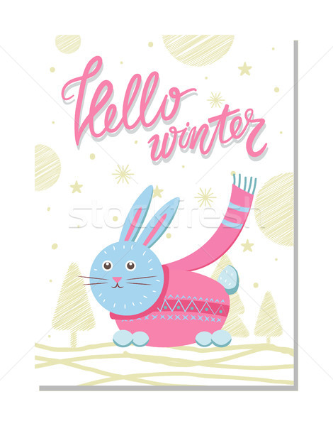 Merhaba kış kartpostal tavşan pembe kazak Stok fotoğraf © robuart