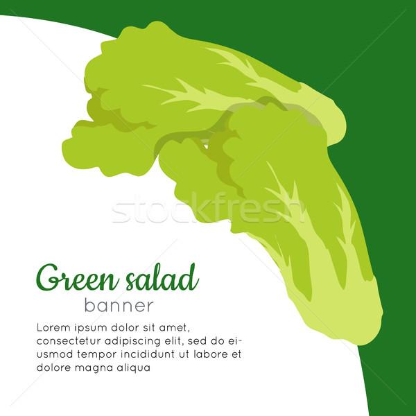 Zöld saláta szalag egészséges étel vektor organikus Stock fotó © robuart