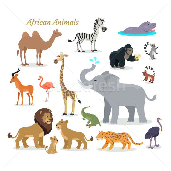 African Fauna Species. Cute Animals Flat Vector. Stock photo © robuart