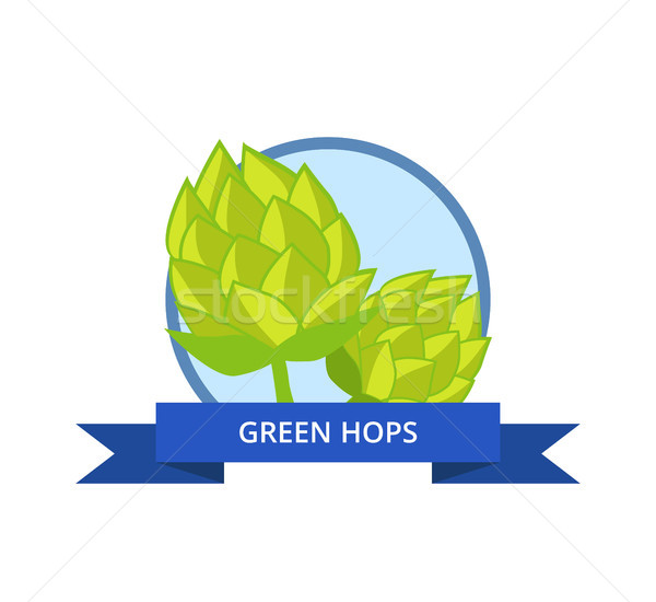 Green Hops Vector Isolated in Circle with Ribbon Stock photo © robuart