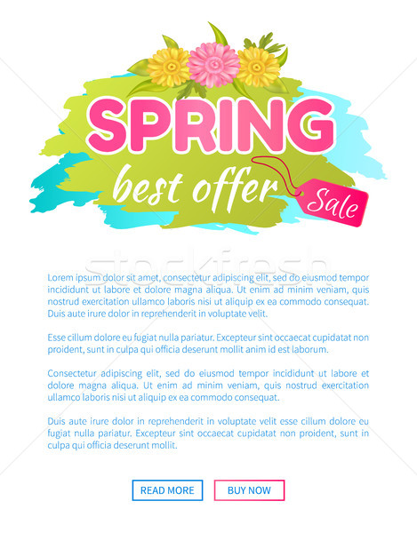 Best Offer Spring Sale Advertisement Daisy Flowers Stock photo © robuart