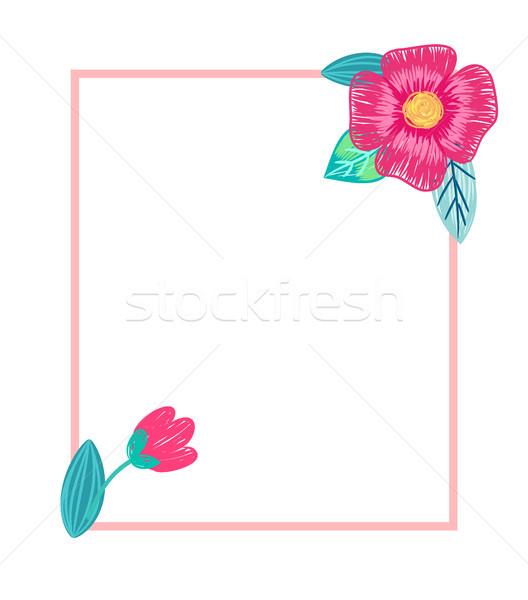 Heldere briefkaart bloemen witte potlood Stockfoto © robuart