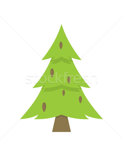 Lonely Green Christmas Tree Iisolated on White Stock photo © robuart