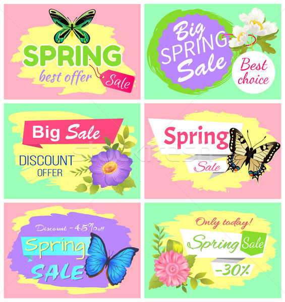Big Spring Sale Collection Vector Illustration Stock photo © robuart