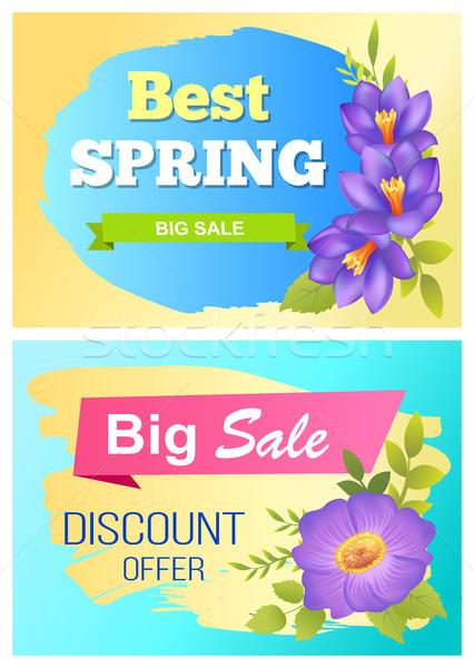 Best Spring Big Sale Advertisement Labels Crocus Stock photo © robuart