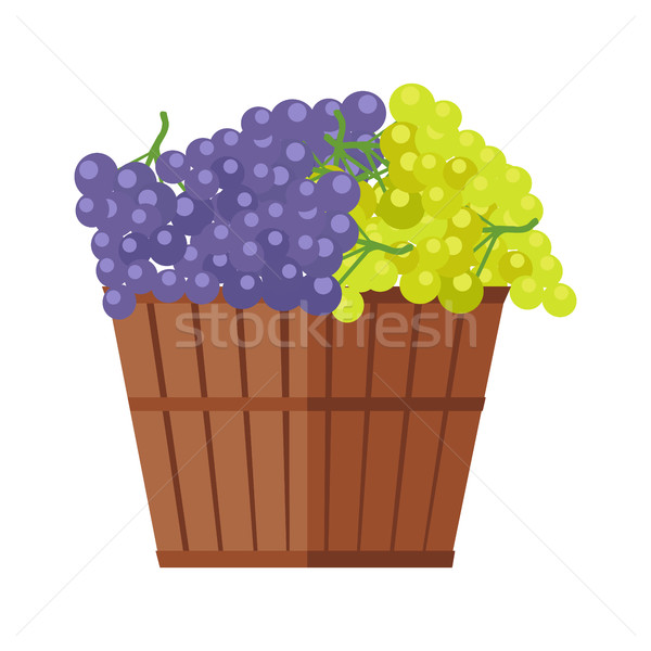Wooden Barrel with Bunches of Wine Grape Stock photo © robuart