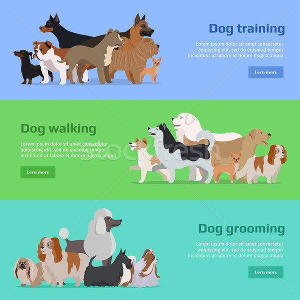 Dog Training, Walking, Grooming Banners Set Stock photo © robuart