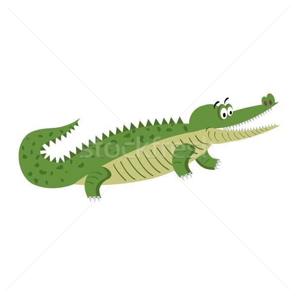 Verde Cartoon cocodrilo naturales plantean aislado Foto stock © robuart