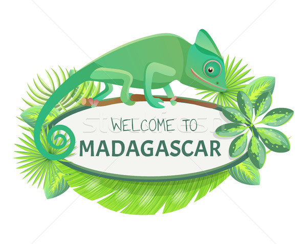 Welcome to Madagascar Banner Vector Illustration Stock photo © robuart
