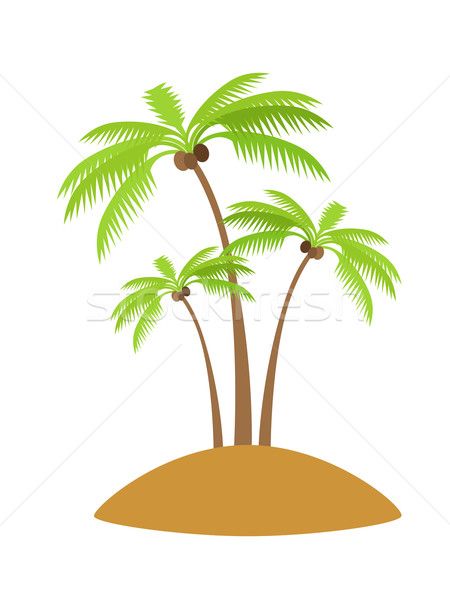 Stockfoto: Palmboom · kokosnoot · eiland · silhouetten · geïsoleerd · witte