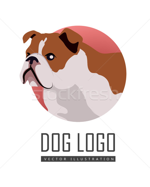 бульдог собака логотип белый коричневый икона Сток-фото © robuart