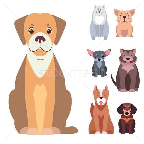 Cute Purebred Dogs Cartoon Flat Vectors Icons Set Stock photo © robuart